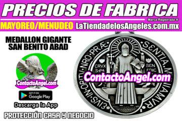 Medallon Gigante San Benito- Protección Hogar y Negocio 1F- La Tienda de los Ángeles - Mayoreo CDMX