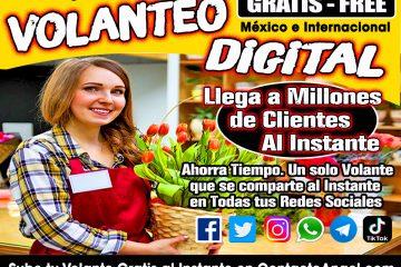Anuncios Clasificados Gratis México e Internacional - Anuncia Todo ANT Florerias1 WP